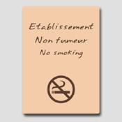 Non fumeur 32m x 25cm Beige et marron
