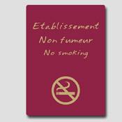 Non fumeur 32m x 25cm Bordeaux