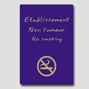 Non fumeur 32m x 25cm Bleu